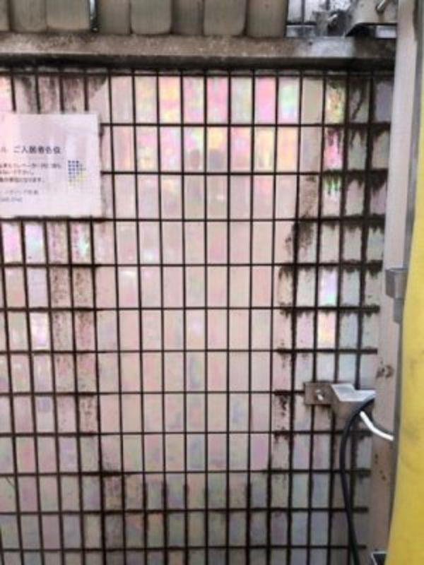 外壁洗浄4