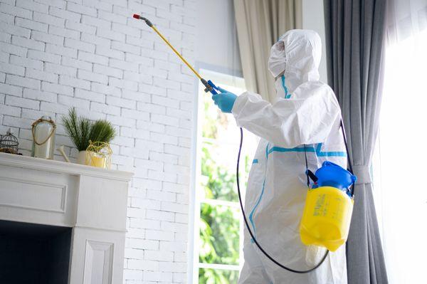 無光触媒コーティングでお部屋の嫌な臭いを改善!仕組みや効果についてご紹介します
